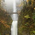 Multnomah Autumn Mist by Mike  Dawson