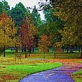 My Autumn by Heidi Smith