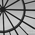 Mystic Wheel  by Steven Milner
