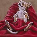 Nap Hard by Barbara Keith