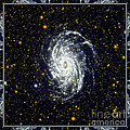 Nasa Big Brother To The Milky Way by Rose Santuci-Sofranko