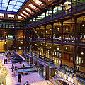 National Museum Of Natural History - Paris France - 011370 by DC Photographer