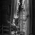 Native Flowers in Vase and Ruffled Curtains