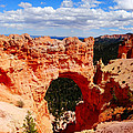 Natural Bridge In Bryce Canyon National Park by Dan Sproul