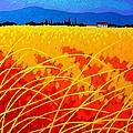 Near Carcassonne  Print by John  Nolan
