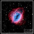 Nebula and Stars NASA Print by Rose Santuci-Sofranko