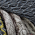 Nets And Knots Number Two by Elena Nosyreva