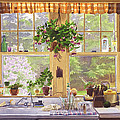 New England Kitchen Window by Mary Helmreich