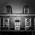 New Orleans- A Skull Paradise Print by Christine Till