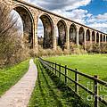 Newbridge Viaduct Print by Adrian Evans