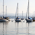 Newport Beach Bay Harbor California by Paul Velgos