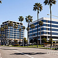 Newport Beach Office Buildings Orange County California Poster by Paul Velgos