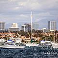 Newport Beach Skyline  by Paul Velgos