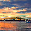 Newport Gold by Joann Vitali