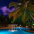Night At Tropical Resort by Jenny Rainbow