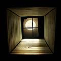 Night Light by Amy Tyler