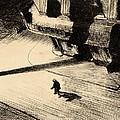 Night Shadows by Edward Hopper