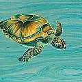 Nik's Turtle by Emily Brantley