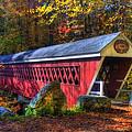 Nissitissit Bridge Brookline Nh by Joann Vitali