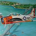 North American T-28 Trainer by Stuart Swartz