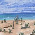 North Beach Haida Gwaii Bc by Barbara St Jean
