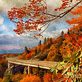 North Carolina  by Darren Fisher