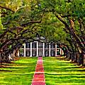 Oak Alley Paint Version by Steve Harrington