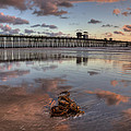 Oceanside Pier Seaweed by Peter Tellone