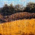 Oklahoma Prairie Landscape by Ann Powell