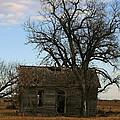 Oklahoma Shack by Ellen Henneke