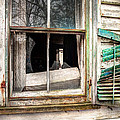Old Broken Window And Shutter Of An Abandoned House by Gary Heller