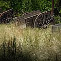 Old Cotton Bale Wagons Print by Allen Biedrzycki