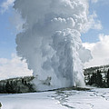 Old Faithful In Her Glory - Yellowstone by Sandra Bronstein
