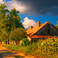 Old farm on the country side Print by Sasa Prudkov