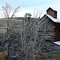 Old Grain Barn by Steve McKinzie