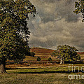 Old John Bradgate Park Leicestershire by John Edwards