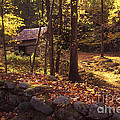 Old Mountain Shed Print by Paul W Faust -  Impressions of Light