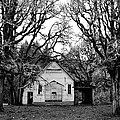 Old School House in the Woods Print by Thomas J Rhodes