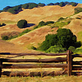 Old Split Rail Fence by Michael Pickett