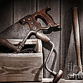 Old Tools by Olivier Le Queinec