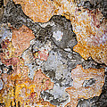 Old Wall Abstract by Elena Elisseeva