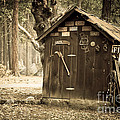 Old Wooden Shed Yosemite by Jane Rix