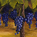 On The Vine by Darice Machel McGuire