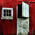 Open Barn Door by Julie Dant