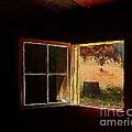 Open Cabin Window II by Julie Dant
