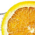 Orange slice in water Print by Elena Elisseeva