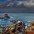 Oregon Coast by Robert Bales