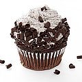 Oreo Cookie Cupcake by Andee Design