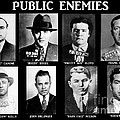 Original Gangsters - Public Enemies by Paul Ward