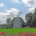 Orleans Windmill by Barbara McDevitt